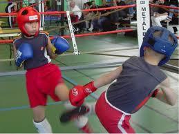 Boxe française